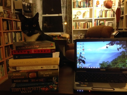 book stack with cat